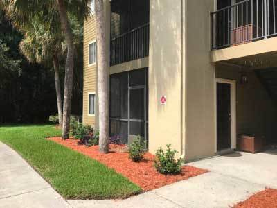 Building Exterior at Palencia Apartments in Tampa, FL