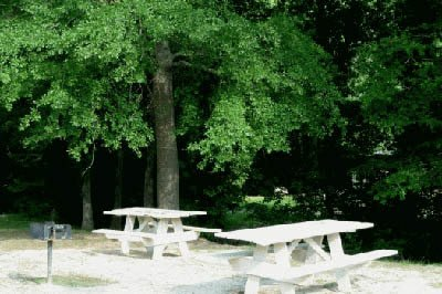 Picnic area at apartments in Douglasville, GA