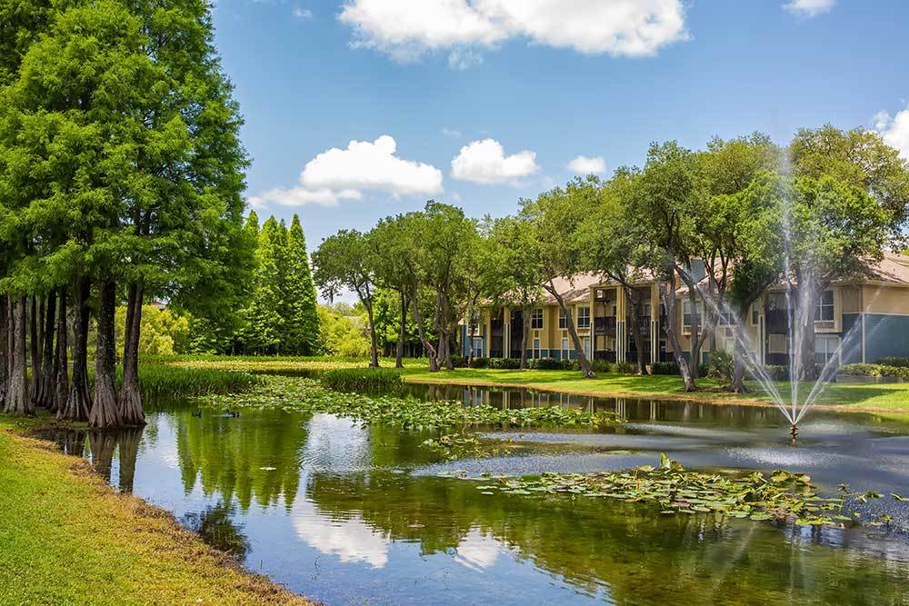 Look at the pretty pond in Tampa at Park East Apartments.