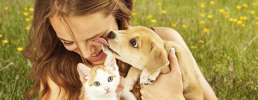View our pet friendly apartments in Shoreline