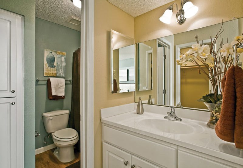 Guest Bathroom at Greenspoint at Paradise Valley in Phoenix, Arizona