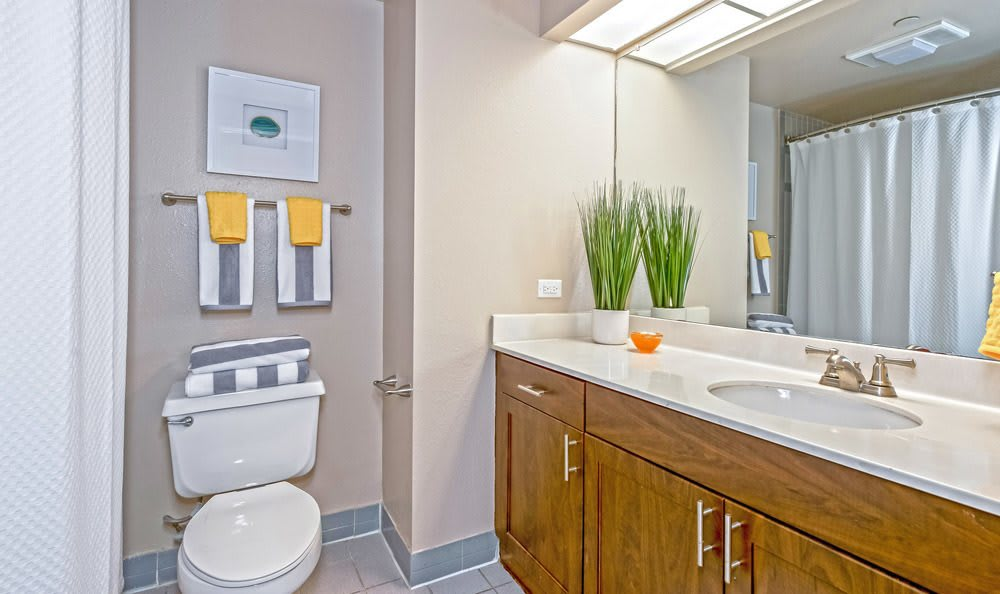 Beautiful bathroom at The Enclave at 1550 Apartments in San Antonio, Texas