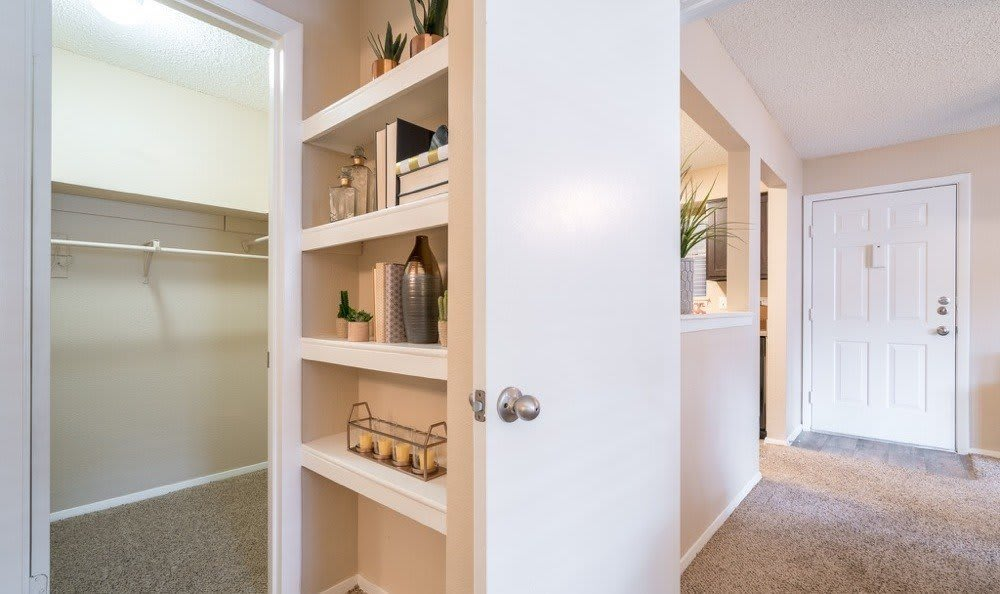 Spacious Cupboard at apartments in Austin, Texas
