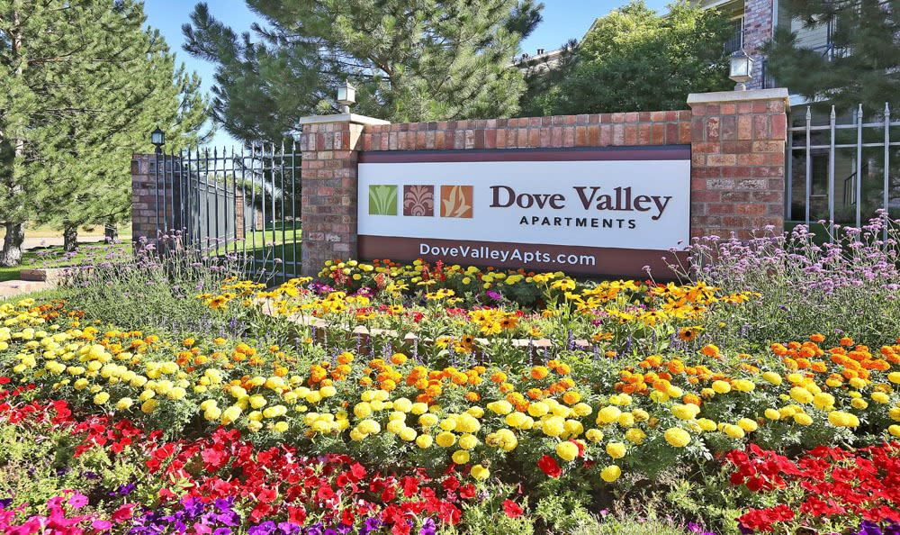 Welcome to Dove Valley Apartments In Englewood CO