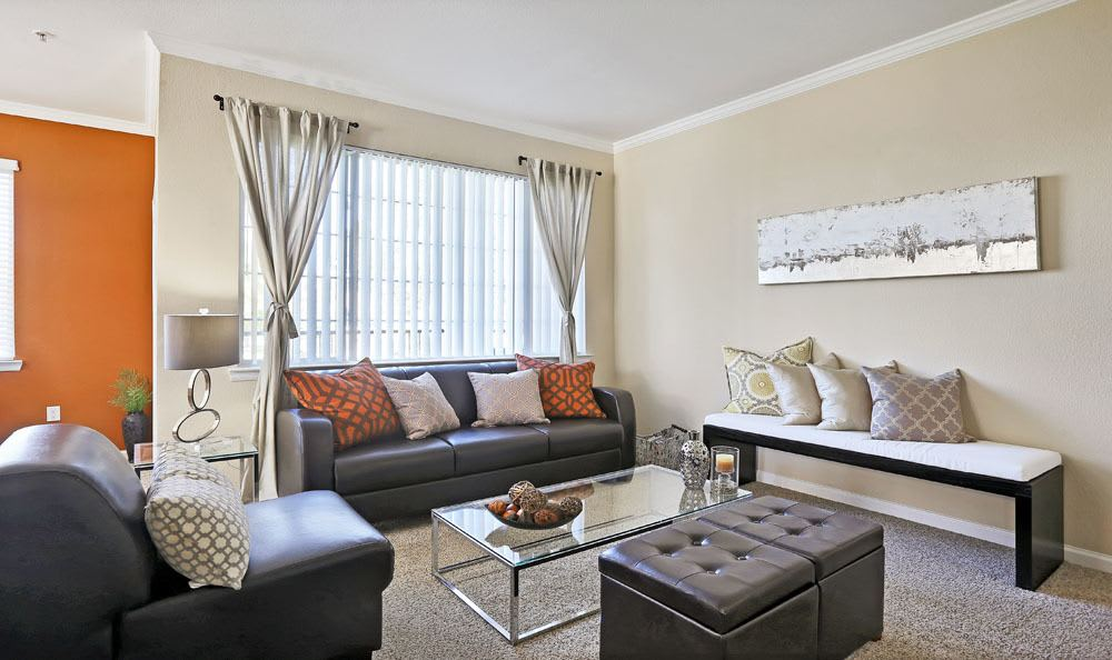 Enjoy a beautiful living room at Dove Valley Apartments