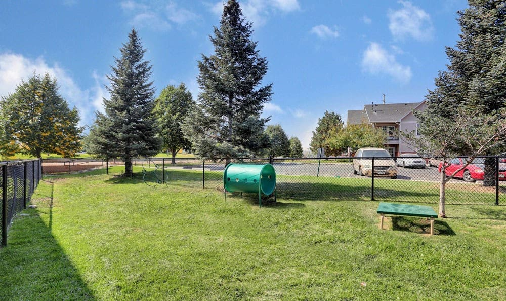 Buffalo Run Apartments offers a newly updated playground in Fort Collins, Colorado