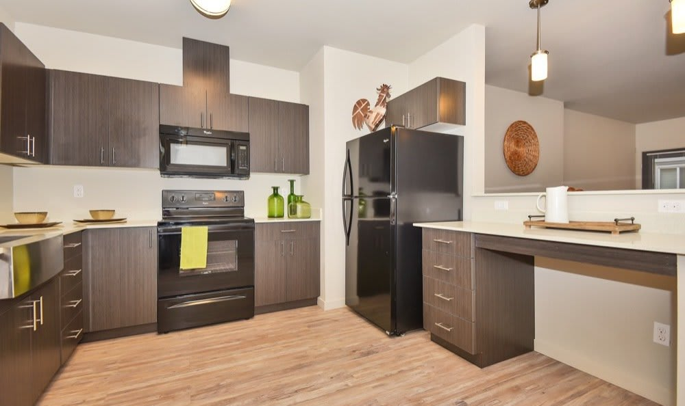 Enjoy a luxury kitchen at Rock Creek Commons