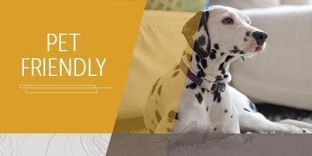 Pet Friendly Apartments in Englewood CO