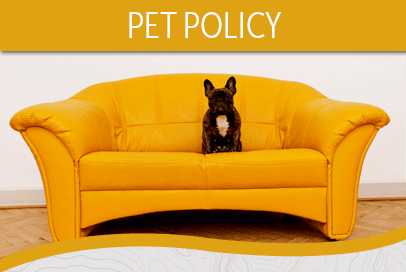 Pet Policy at Courtside Apartments in Olympia WA