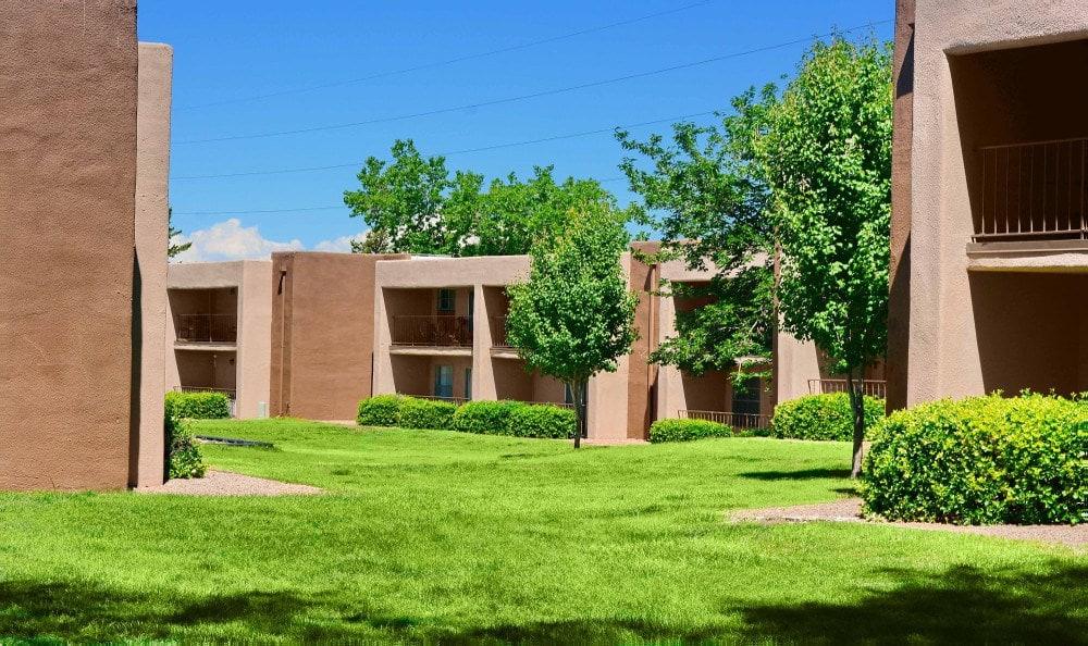 Courtyard at Indigo Park in Albuquerque, NM