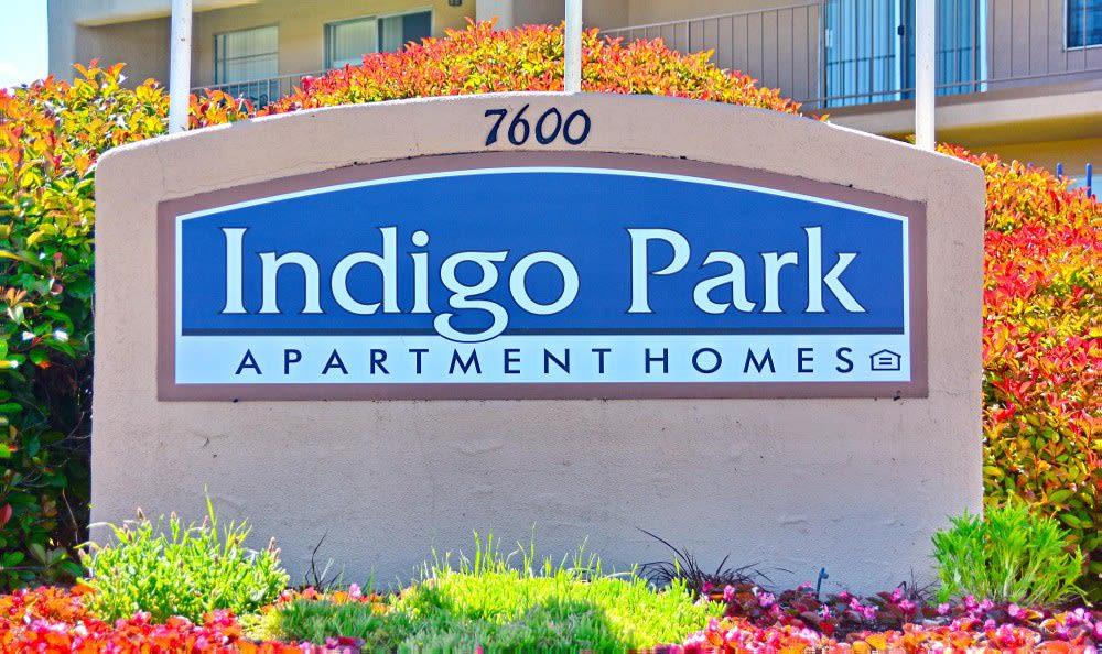 Monument Sign at Indigo Park in Albuquerque, NM