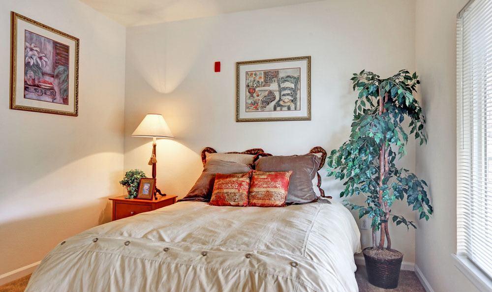 Spacious bedroom at apartments in Brighton, Colorado