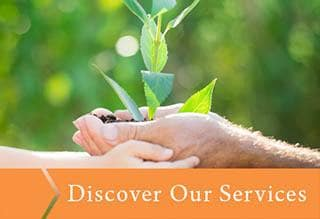 Discover the services that Emerald Gardens offers