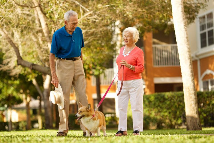 Active senior living couple in Florida enjoying a pet friendly lifestyle