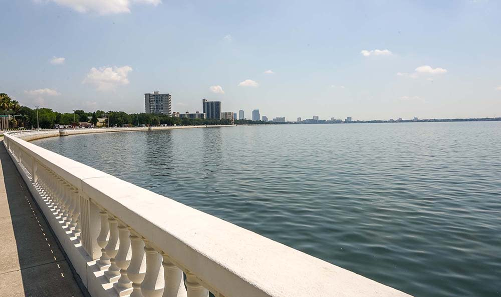 Beautiful Bay Near Bay Oaks In Tampa