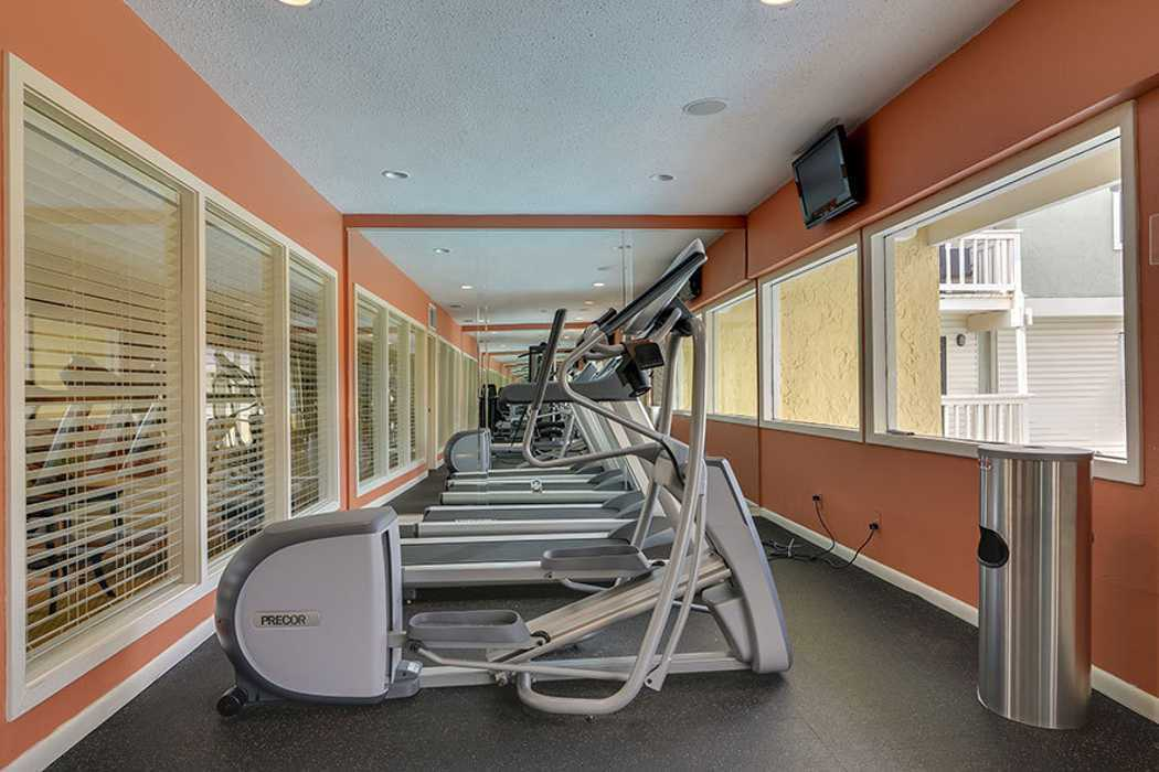 Fitness area at Bay Oaks in Tampa