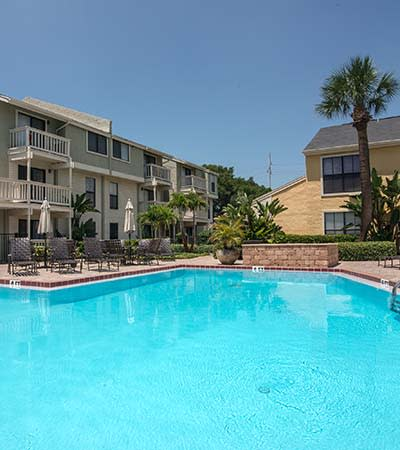 bayshore tampa fl apartments for rent palma ceia bay oaks