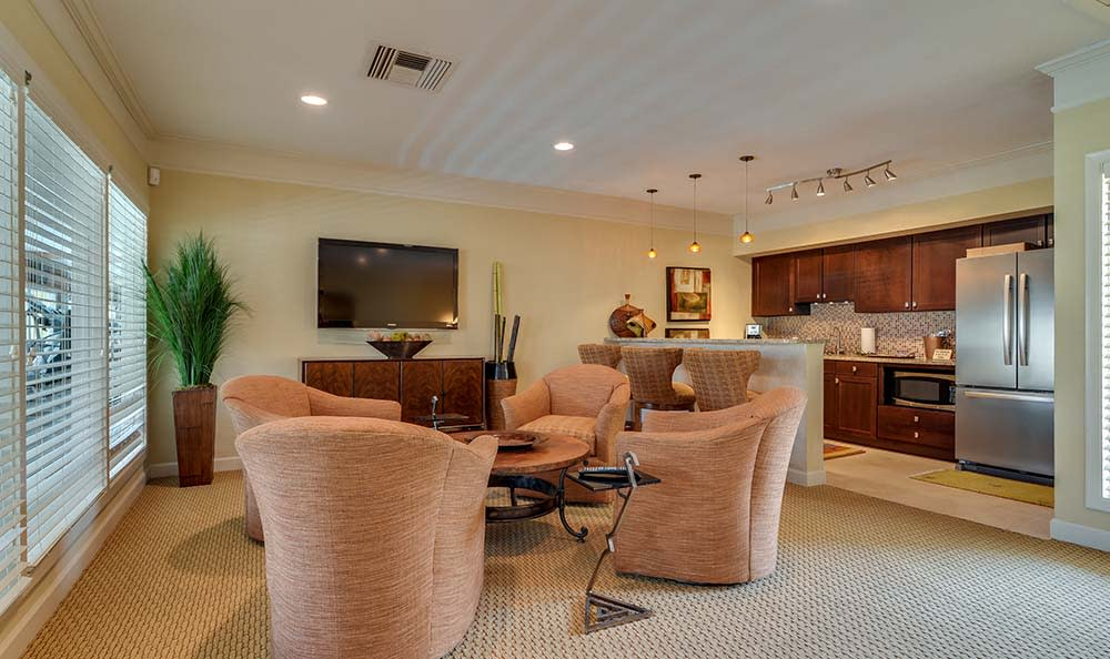 Tv Lounge At Bay Oaks In Tampa