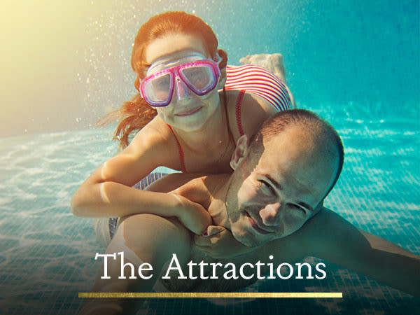 The Attractions - Apartment and Community amenities at Legacy at Meridian in Durham, North Carolina