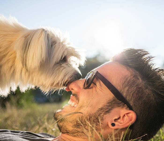 Pet-friendly apartments in Plano, TX