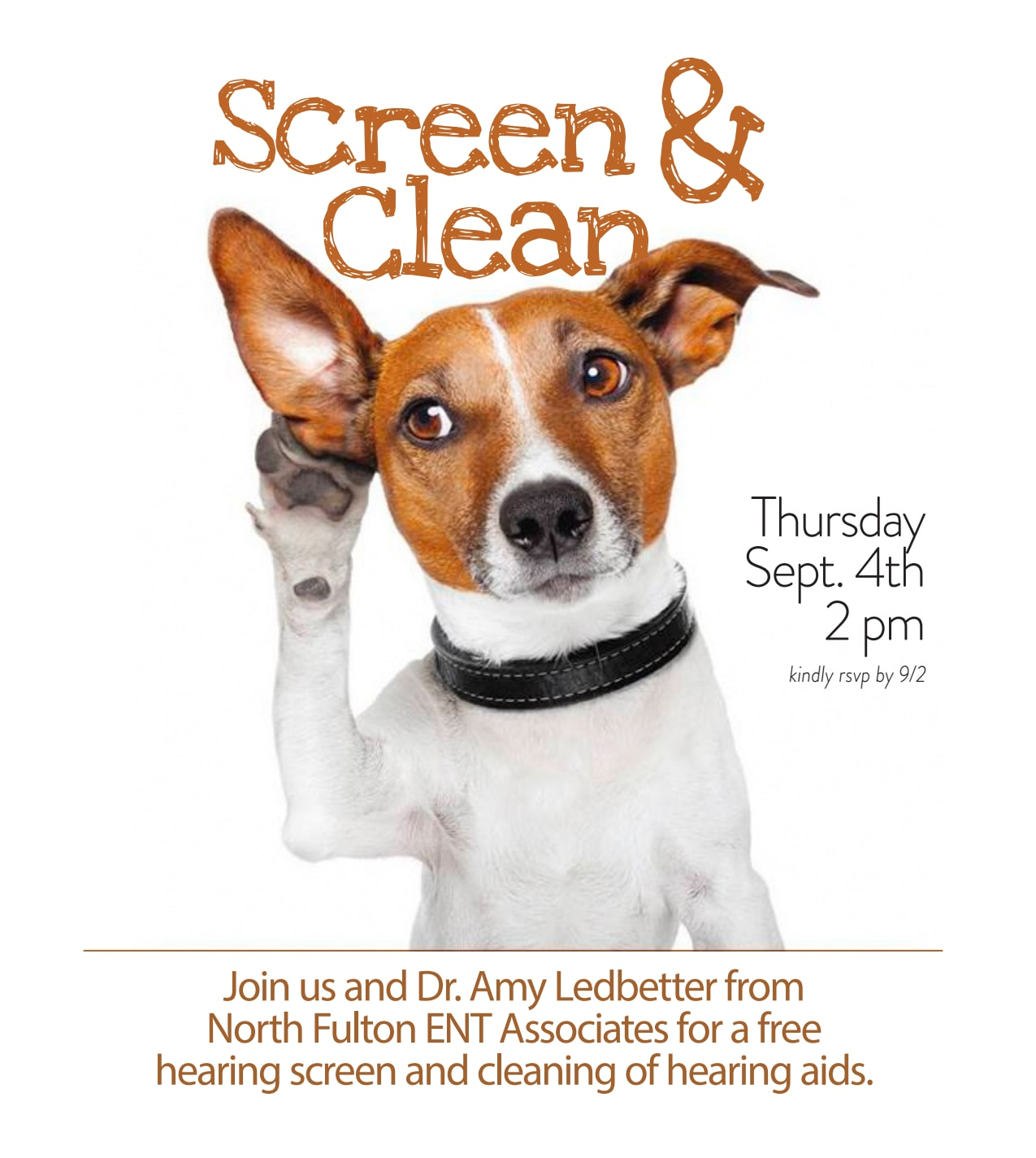 Screen & Clean - activities at Benton Village of Stockbridge in Stockbridge, GA