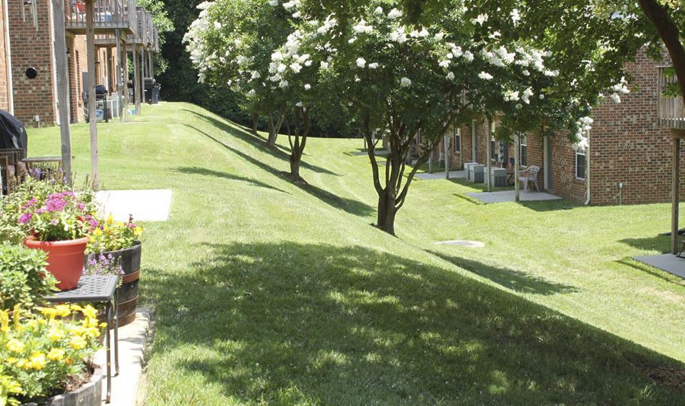 landscape at Meadowridge Apartments in Franklin, VA