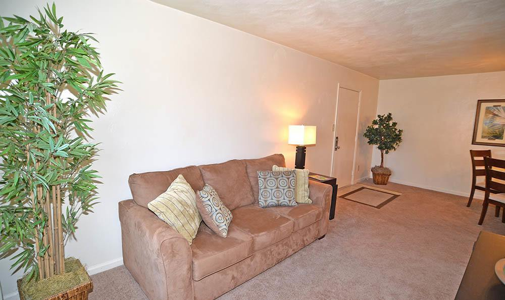 living room at Biltmore Commons Apartments in Portsmouth, VA