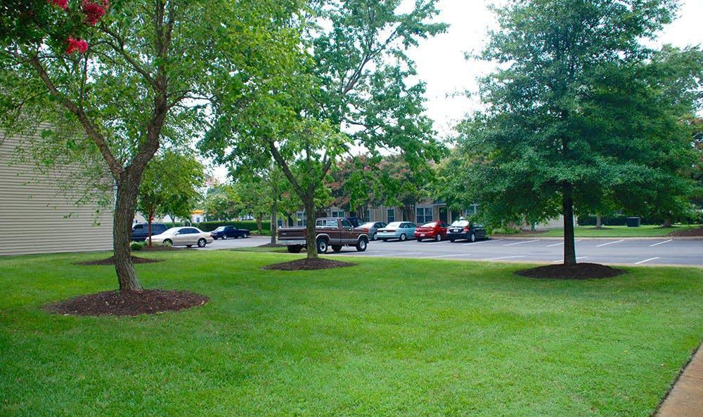landscaping at Arbor Glen Apartments in Chesapeake, VA