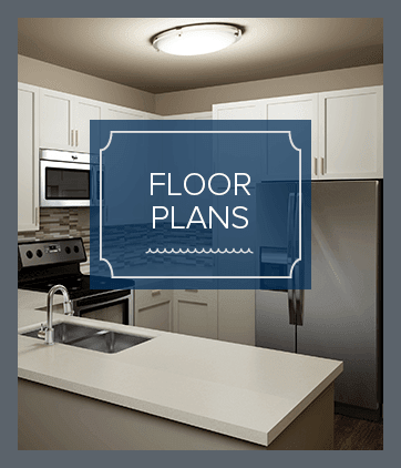 Apartment floor plans at Silver Collection at Carl D. Silver Parkway in Fredericksburg, Virginia