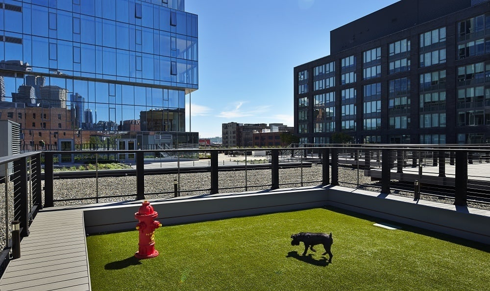 Onsite dog run at The Nolo at Stadium Place in Seattle, Washington