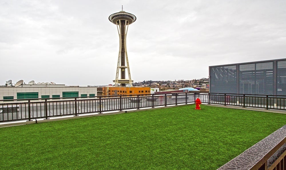 Dog run with view of Space Needle The Century Apartments