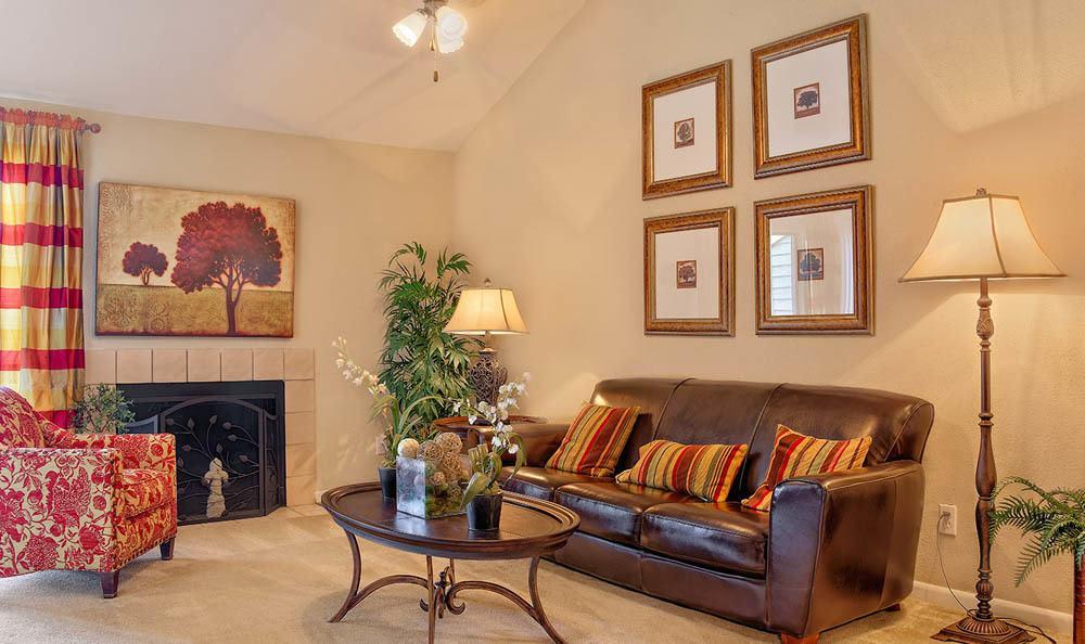 Luxury apartment living in Texas