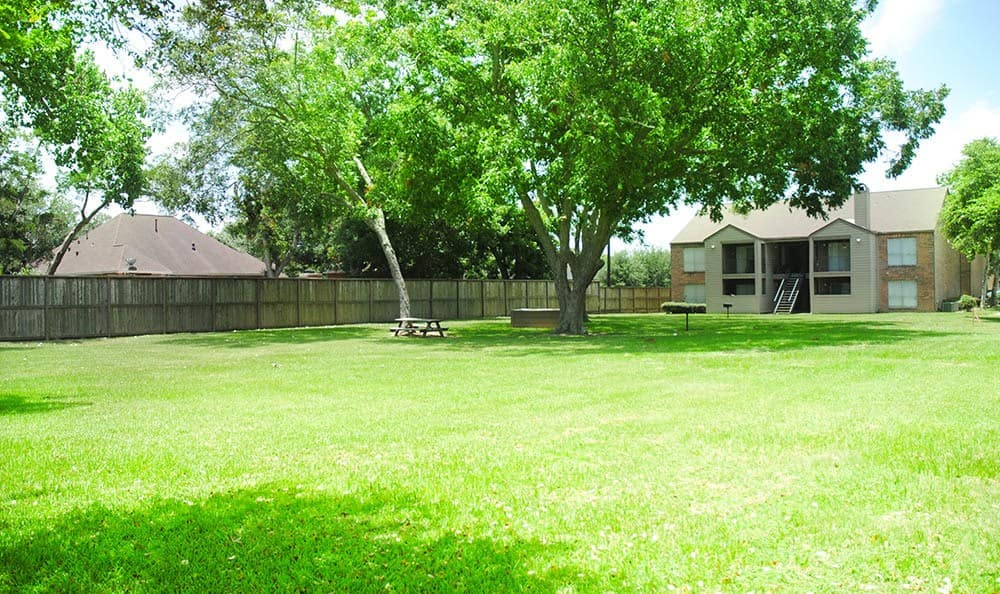 Large grassy picnic area at our apartments here in Bay City, TX