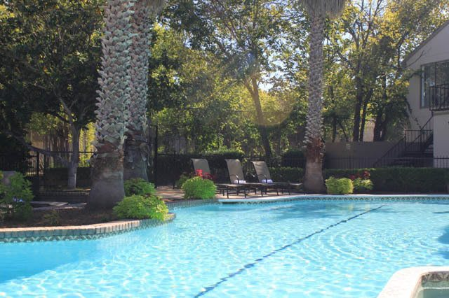 Swimming pool at Excelsior on the Park Apartments