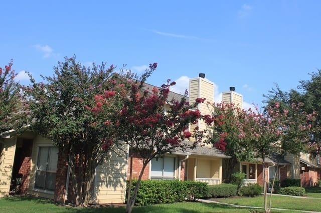 Apartment building overlooking beautiful foliage at The Farrington Apartments