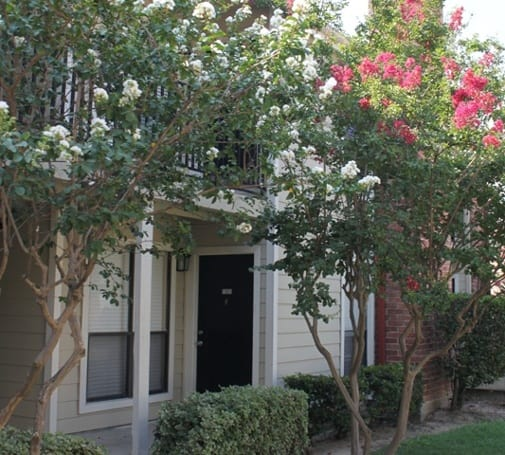 Beautiful apartments in Texas