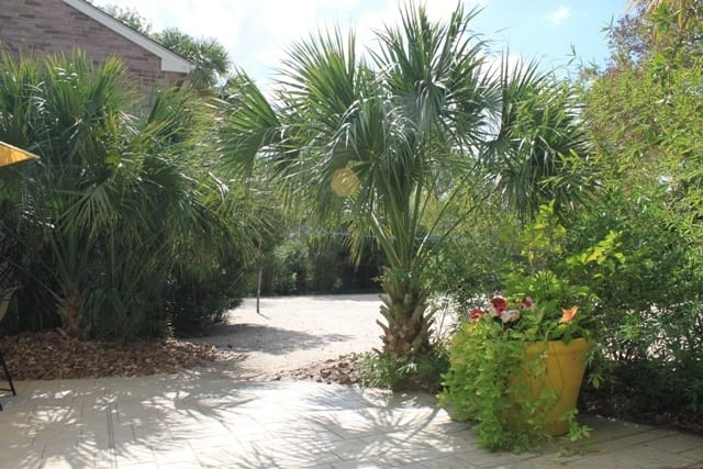 Beautiful walkways at St. Gregory's Beach Apartments