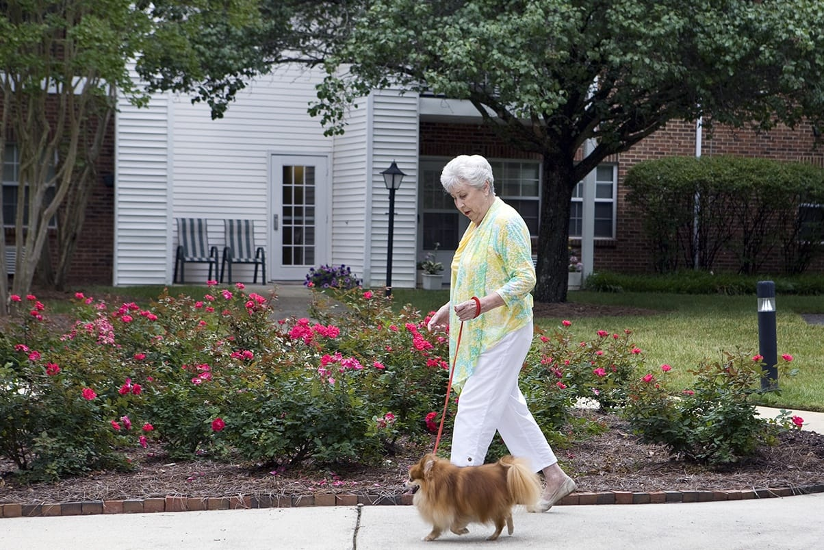 Pet Friendly Community At Senior Living In Raleigh North Carolina