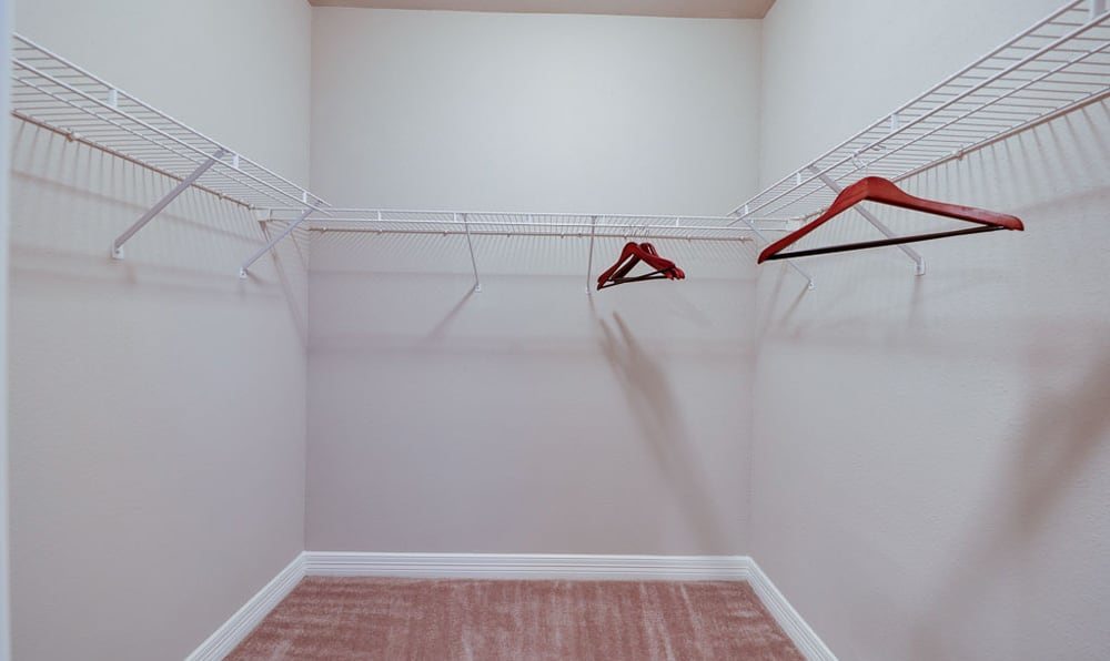 Large walk in closet at River Pointe