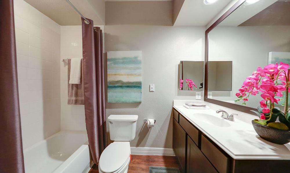 Guest Bathroom at River Pointe