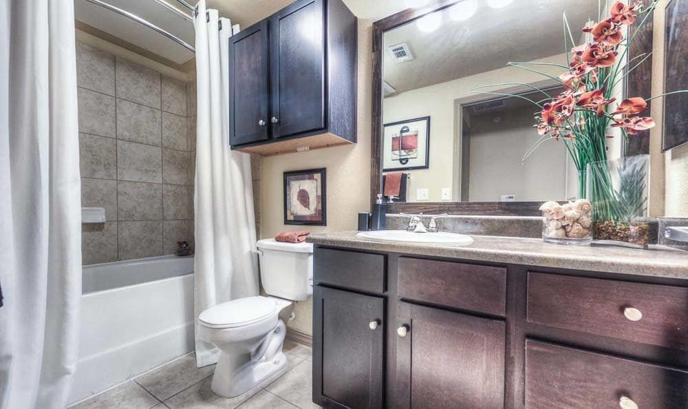 Photo of an Apartment bathroom at Discovery at Kingwood