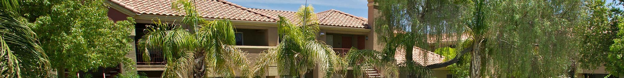 Wonderful neighborhood at the apartments for rent in Mesa