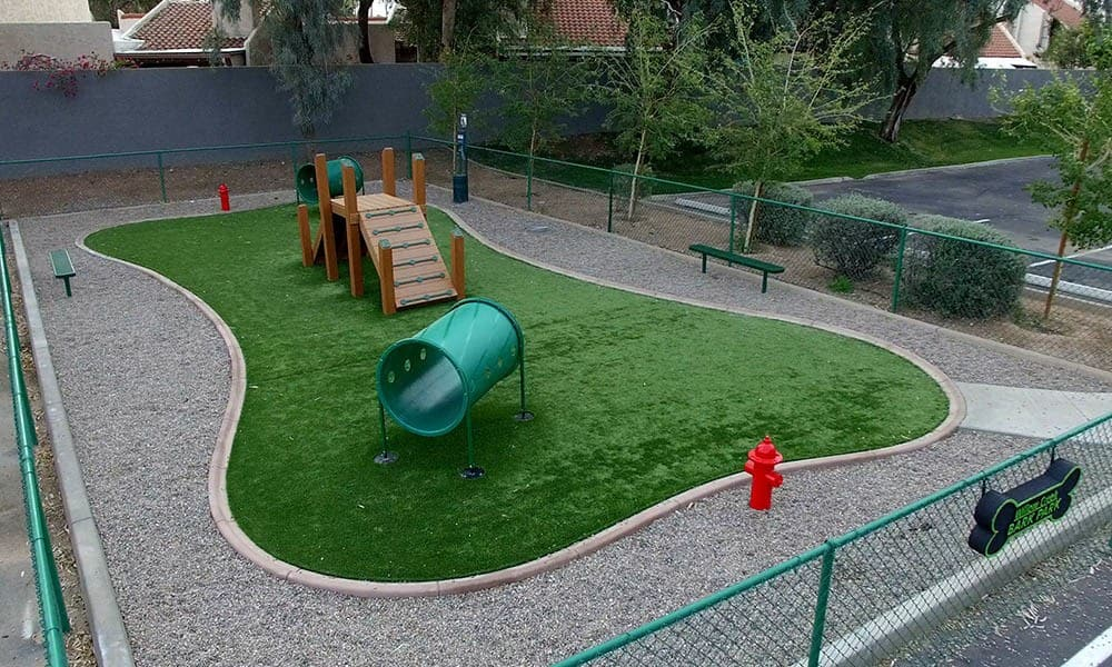 Dog Park at Willow Creek Apartments in Tempe, AZ
