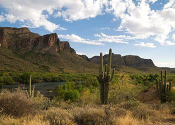 Local attractions near the apartments for rent in Gilbert