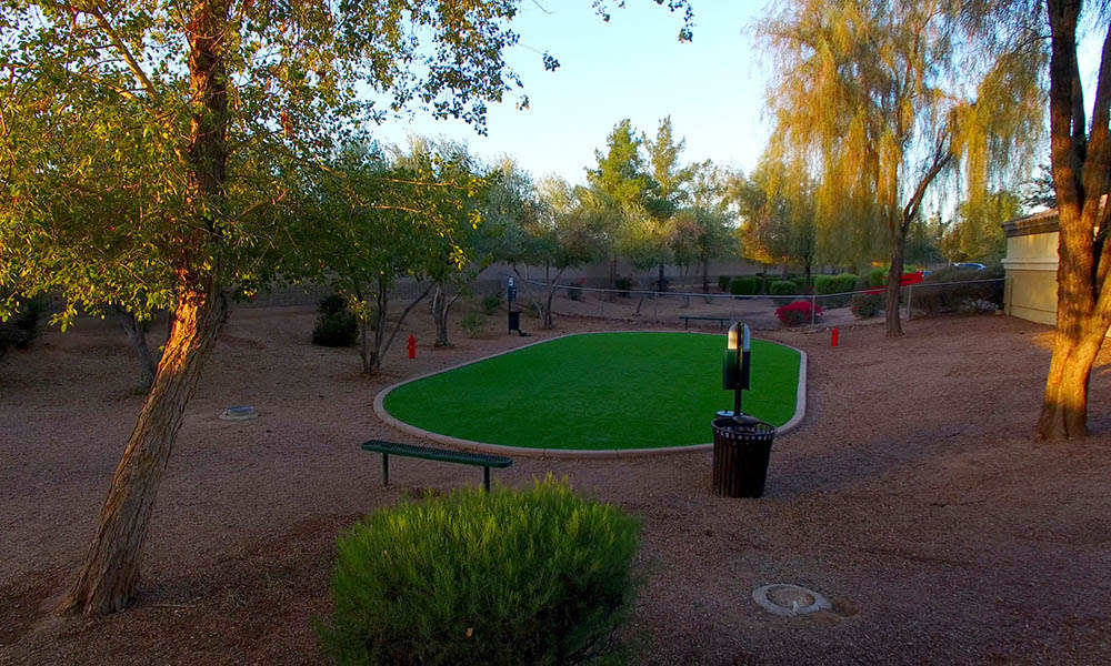Dog Park at 2150 Arizona Ave South in Chandler, AZ