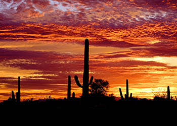 Scenic views near the apartments for rent in Scottsdale