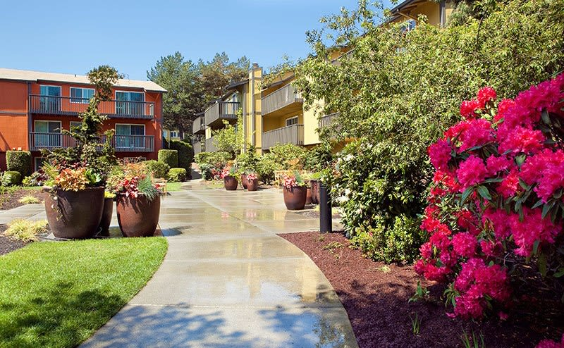 Beautiful gardens at Bellevue apartments