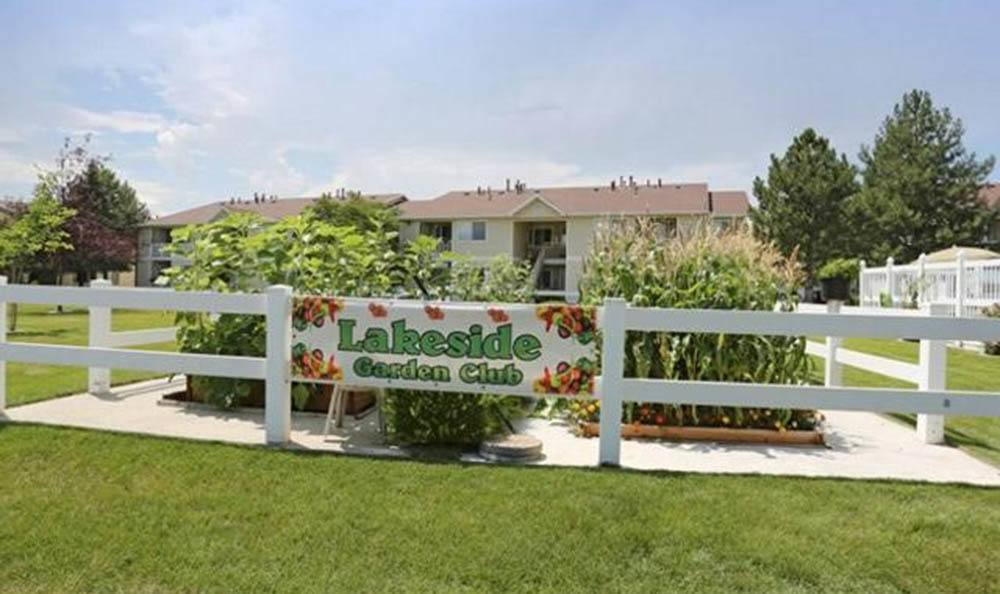 Lakeside Village Apartments Community Garden