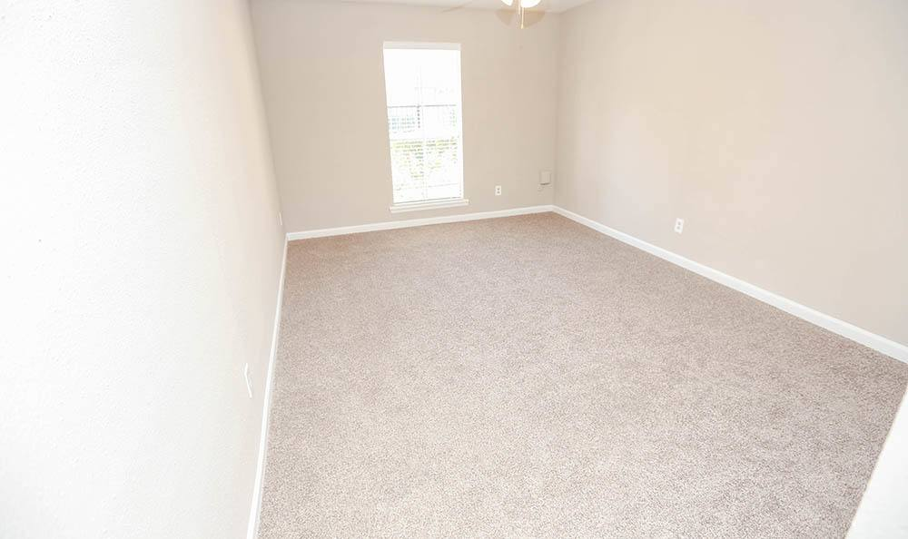Apartment Interiors In One Pine Apartments TX