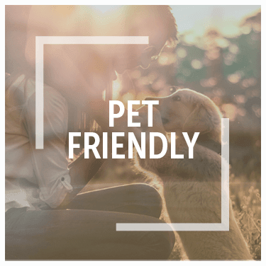 Pet friendly apartments in San Antonio